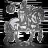 Oaks editrice